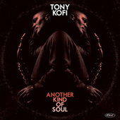Stars Fell on Alabama (Live) by Tony Kofi