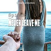 NEVER LET GO by Spirit