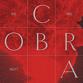 We Are Next by Cobra