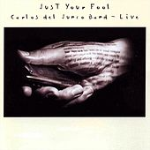 Just Your Fool by Carlos del Junco Band