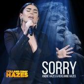 Sorry (Holland Zingt Hazes) by Roxeanne Hazes