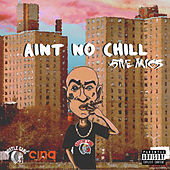 Aint No Chill (LP Explicit) de 5ive Mics