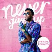 Never Give Up (Remixes) von Cimo Fränkel