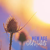 New Age - Old Habits by Various Artists