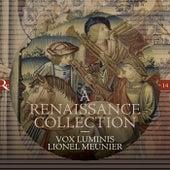 A Renaissance Collection by Lionel Meunier