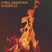 Goddess von Chris Dingman