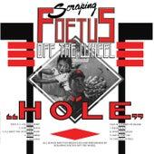 Hole von Foetus