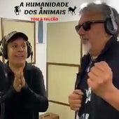 A Humanidade dos Animais (feat. Tom Cavalcante) de Falcão