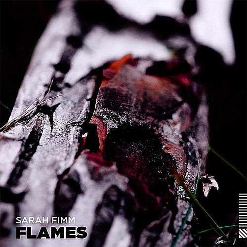 Flames by Sarah Fimm