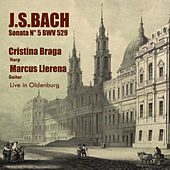 Sonata N° 5 BWV 529 de Marcus Llerena