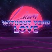 Without Your Love de Liam