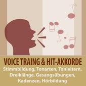 Voice-Training & Hit-Akkorde: Stimmbildung, Tonarten, Tonleitern, Dreiklänge, Gesangsübungen, Kadenzen, Hörbildung von Tonmeister TA