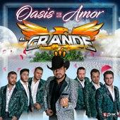 Oasis De Amor de El Grande del Real