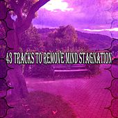 43 Tracks to Remove Mind Stagnation von Massage Therapy Music