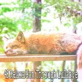 48 Relaxation Through Lullabye by Baby Sleep Sleep