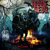 Roadie Metal, Vol. 10 by Vários Artistas