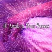 40 Awaken Your Senses de Meditation Zen Master