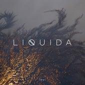 Liquida by Levi