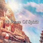 75 Peace of Spirit de Meditación Música Ambiente
