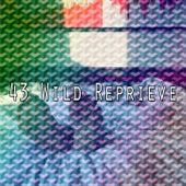 43 Wild Reprieve de Best Relaxing SPA Music
