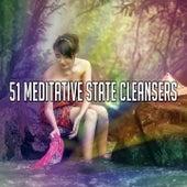 51 Meditative State Cleansers de Meditation Awareness