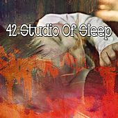 42 Studio of Sleep von Rockabye Lullaby