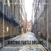 Electric Turtle Dreams by Sean Beaver