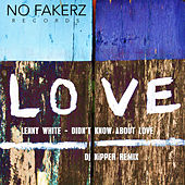 Didn't Know About Love (DJ Nipper Remix) by Lenny White