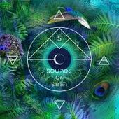 Bar 25 Music Presents: Sounds of Sirin Vol.5 von Various Artists