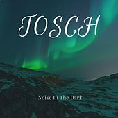 Noise in the Dark von Tosch