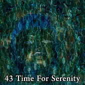 43 Time for Serenity by Deep Sleep Meditation