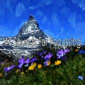 47 Sounds for Focussing de White Noise Research (1)