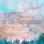 65 Zen Harmonizers de Musica Relajante