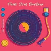 Funk Soul Brother de Various Artists