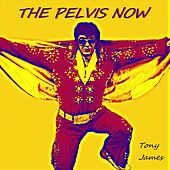 The Pelvis Now by Tony James