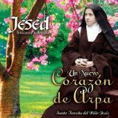 Un Nuevo Corazón de Arpa by Jésed