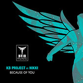 Because Of You by KB Project
