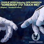 Somebody (To Touch Me) de Charlie Bosh