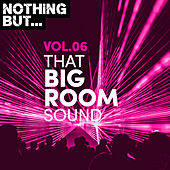 Nothing But... That Big Room Sound, Vol. 06 by Various Artists
