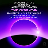 Stand On The Word (Remixes) de Elements Of Life