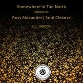 Soul Cleanse de Ross Alexander