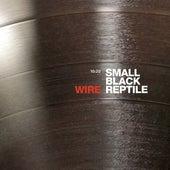 Small Black Reptile (10:20 Version) di Wire