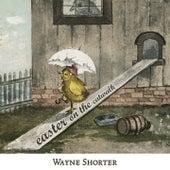 Easter on the Catwalk von Wayne Shorter