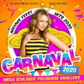 Carnaval 2020 - Mega Schlager Polonaise Knallers (De grootse en leukste Party Hits Deel 1 - Nieuwe Feest Hits 2020) von Various Artists