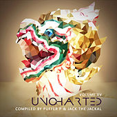 Uncharted Vol.15 by Various Artists