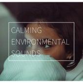 Calming Environmental Sounds: Relaxing Music to Lower Cardiovascular Stress von massage