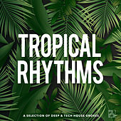 Tropical Rhythms de Various Artists