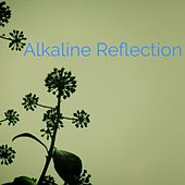 Reflection by Alkaline