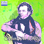 Schubert and Chill by Franz Schubert