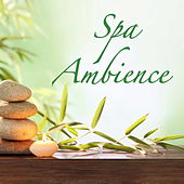 Spa Ambience by Various Artists